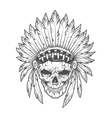 Indian skull with feathers art vector image vector image