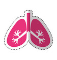lungs human organ icon vector image