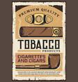 premium quality tobacco cigars and cigarettes vector image