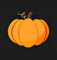 pumpkin on the hand-draw dark doodle background vector image