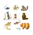 Rodents Collection vector image vector image
