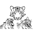 Tiger Tattoo Drawings vector image vector image