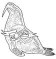 Walrus skeleton vector image