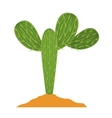 Cactus plant with earth design vector image vector image
