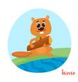 cartoon of wild animal beaver vector image