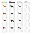 collie dachshund beagle and other web icon in vector image vector image