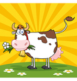 Cow in a paddock vector image