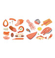 different types of meat products and fish set vector image vector image