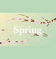 hello spring banner background with beautiful vector image vector image