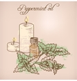 Peppermint essential oil and candles vector image