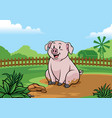 pig playing in the mud vector image