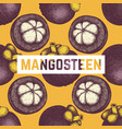 purple mangosteen fruit background vector image vector image