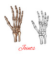 Sketch icon of human hand bones or joints