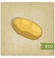 potato eco background vector image