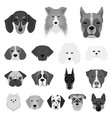 dog breeds monochrome icons in set collection for vector image vector image