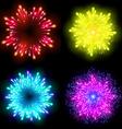 Festive patterned firework bursting in various vector image vector image
