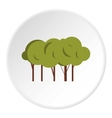 Lot of trees icon flat style vector image vector image