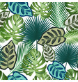 seamless pattern with tropical leaves palms vector image vector image