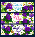 spring flower with butterfly greeting banner vector image vector image