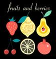 Graphic set of various fruits and berries vector image vector image