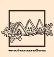 hand drawn watermelon vector image