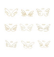 hand drawn wings set of design elements vector image