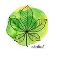 leaf chestnut vector image vector image
