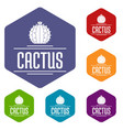 nature cactus icons hexahedron vector image vector image