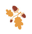oak branch vector image vector image