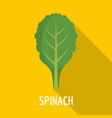 spinach icon flat style vector image vector image