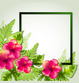 summer frame with red flowers vector image vector image