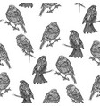 seamless monochrome pattern with bullfinches vector image