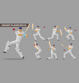 concept of a cricket players set vector image vector image
