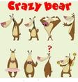 Cute Bear vector image vector image