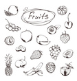 Fruits and berries sketches of icons set vector image vector image