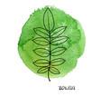 leaf rowan tree vector image vector image