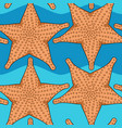 seamless pattern with starfish vector image vector image