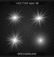 bright star light vector image vector image