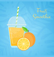 orange raw fruit tasty smoothie promo web banner vector image