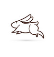 rabbit jumping graphic vector image