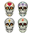 Skulls with flowers vector image vector image