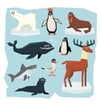 Arctic and Antarctic Animals Fish Set vector image vector image