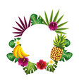 delicious fruits with beauty plants and flowers vector image vector image
