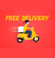 free delivery concept supplier on scooter vector image