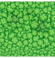 seamless pattern of vector image