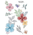 set colorful watercolor florals branch vector image