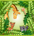 wild animal in forest template vector image vector image