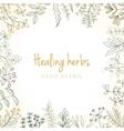 Vintage card of medicinal organic healing herbs vector image