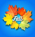autumn background with leaves on background vector image vector image