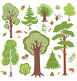 forest trees plants and mushrooms other woodland vector image vector image